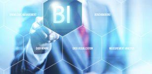 پرسشنامه هوش تجاری پروویچ و همکاران