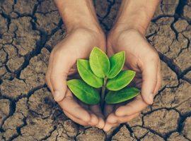 پرسشنامه ارزش های محیط زیستی