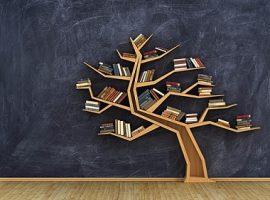 ادبیات و پرسشنامه اقدامات مدیریت دانش فاون چانگ و ین جانگ
