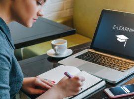 پرسشنامه عوامل موثر یادگیری الکترونیکی مصلحی